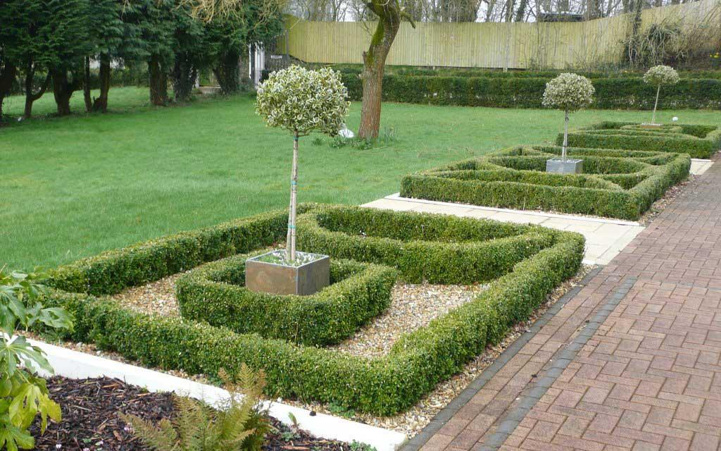knot garden front rogerstone gardens cardiff garden