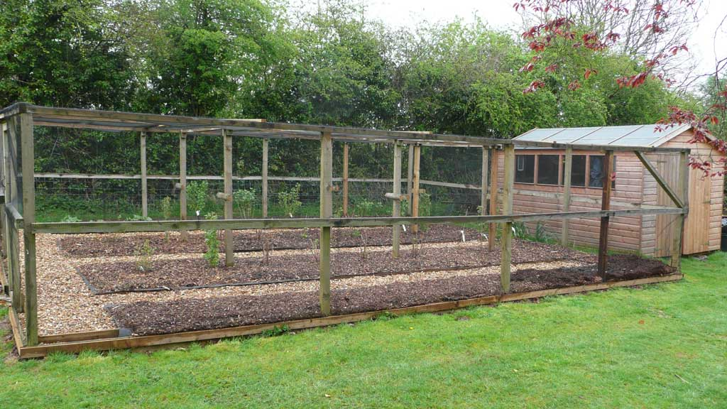 Allotment rogerstone gardens cardiff garden design wales for Fruit and vegetable garden design
