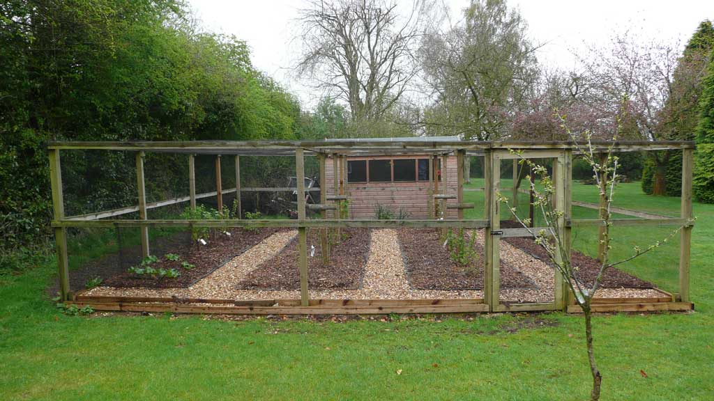 Site visit fruit vegetable and cutting garden rogerstone gardens garden design planting for Large vegetable garden design plans